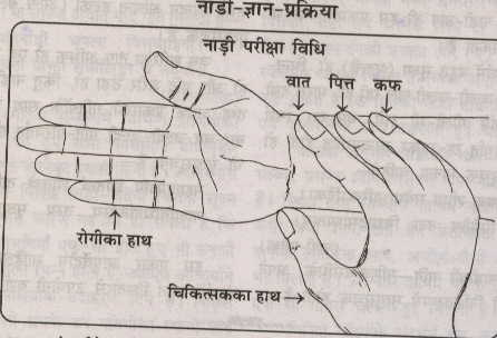 Process of Ayurvedic style of Radial Pulse Examination, First finger denotes to VATA, second finger to PITTA and Third finger to KAPHA Dosha