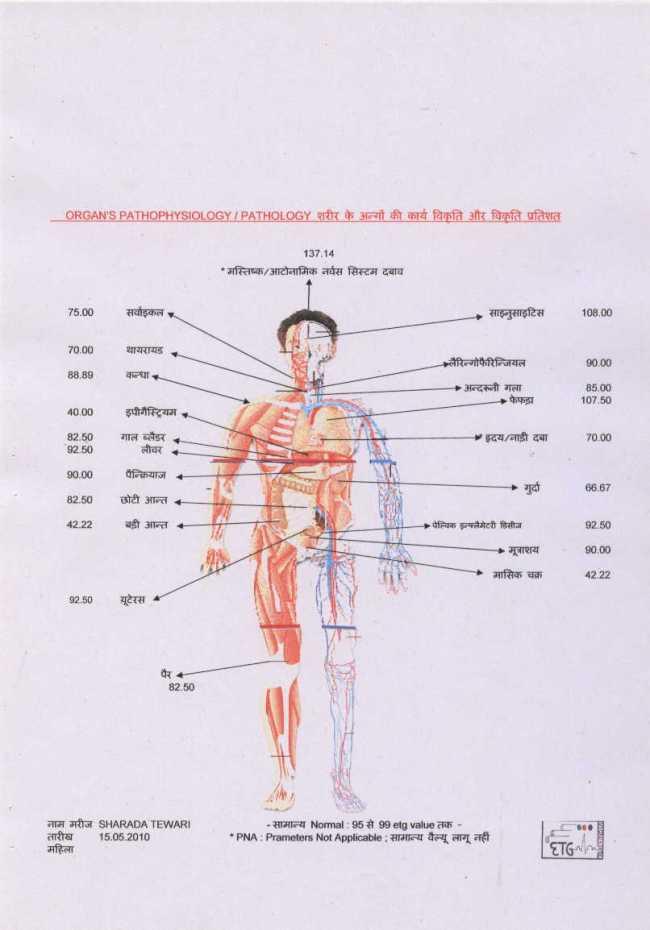 Electro Tridosha Graphy ; ETG AyurvedaScan  Report's Third Page