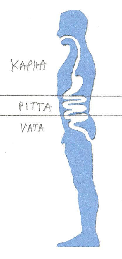 VATA001 002