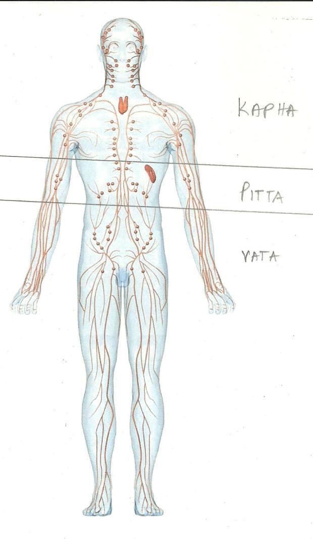 VATA001 004