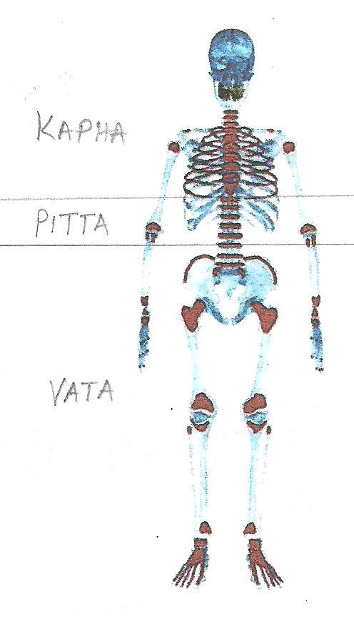 VATA001 006