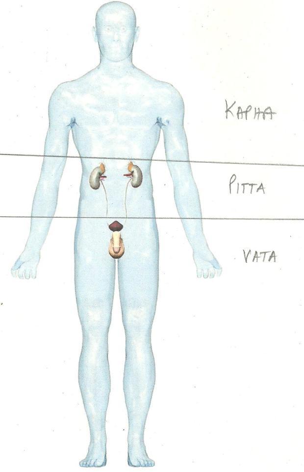 VATA001 011